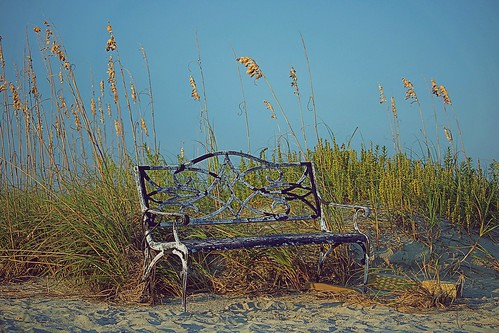 brennentamerlano grass blue sky iron landscape scenic island oats seaoats sea nature bench sand beach