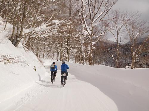 雪の中走るのはたのしい