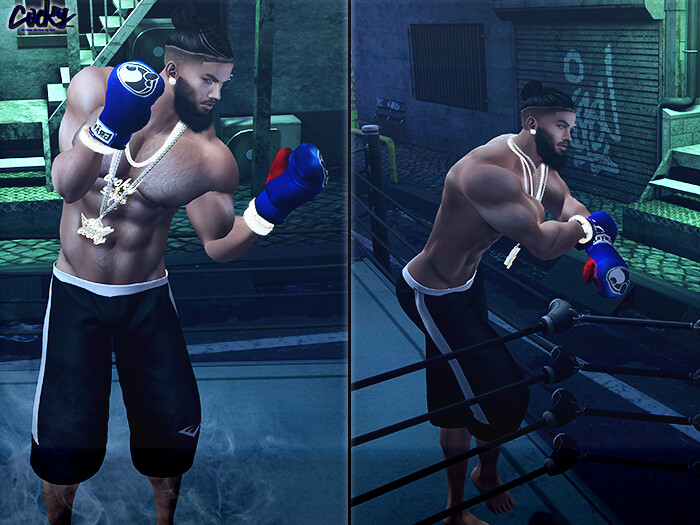 Fight Night - SecondLifeHub.com