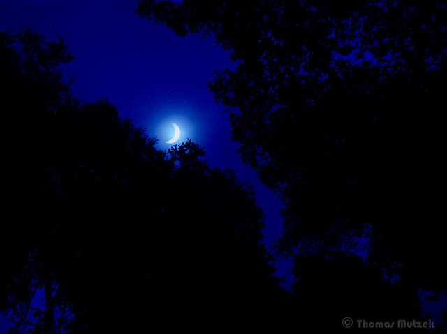 Solar Eclipse 8/21/17 as seen from Skyline Blvd (HWY 35) near Woodside, CA