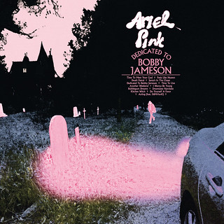 Psychedelic weirdo Ariel Pink releases first solo album in three years