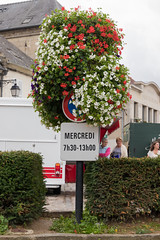 No parking with flowers