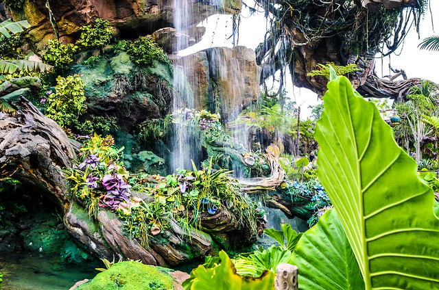 Waterfall plants Pandora AK