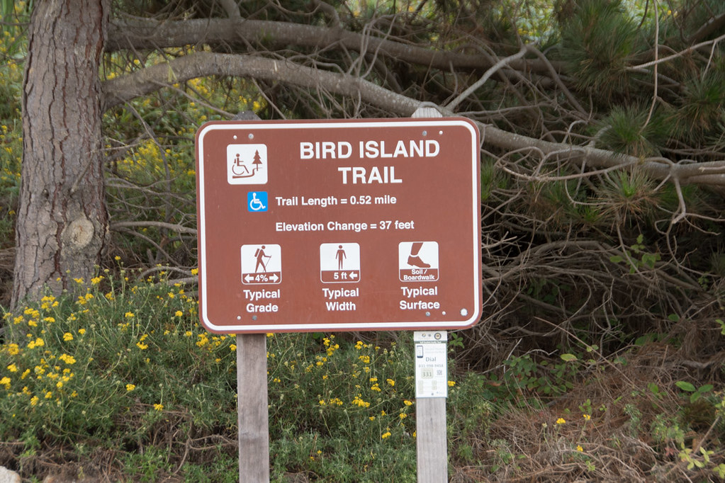 Bird Island Trail