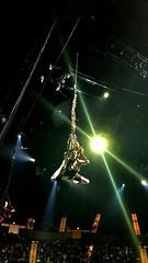 Cirque du Soleil OVO I