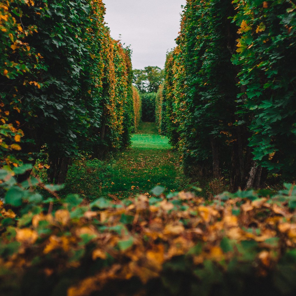 Drottningholm garden