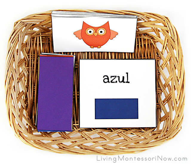 Owl Color Matching and Spanish Color Names Basket