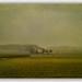 On a Pilgrim Way 2 by franzisko hauser