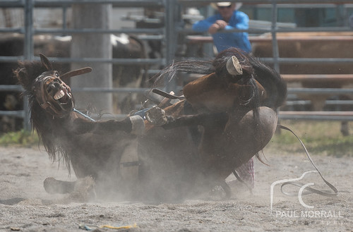 Stroud Rodeo-23