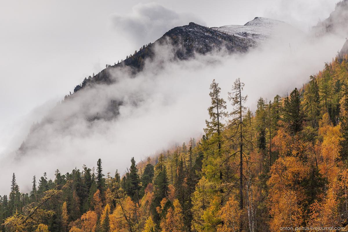 Осенее путешествее по Алтаю