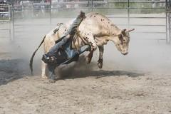 Lil'Wat Nation Championship Bulls & Barrels at the Lake