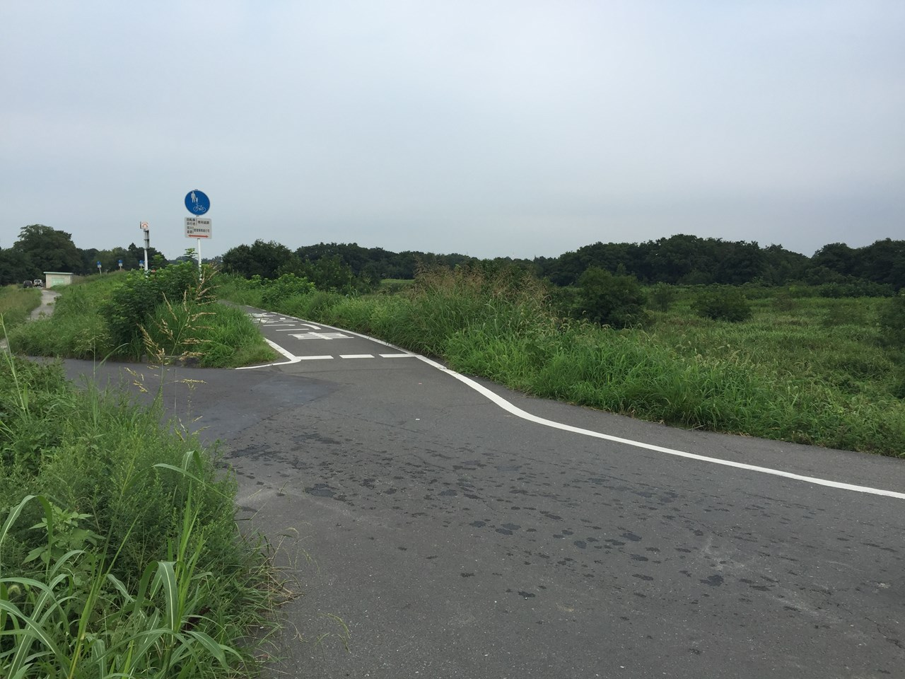 20170826_Arakawa Long Run (10)