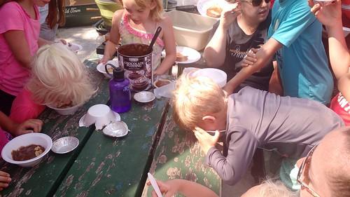 July 11 2017 Bartholomew Reunion Lake Wapello (18)