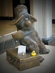 Ducky Meets Paddington!