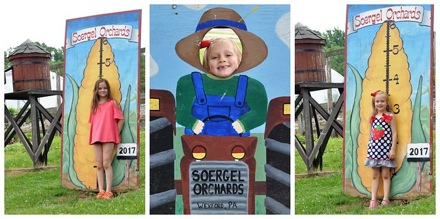 Soergel Orchards