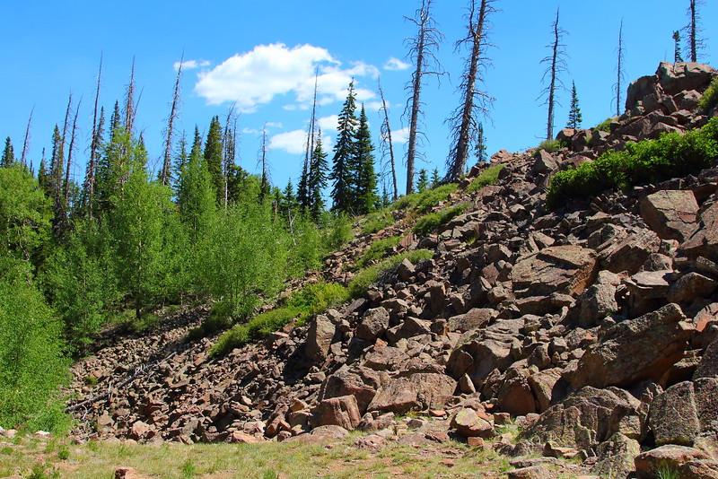 IMG_4891 Alpine Pond Trail