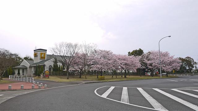 宮島SA上り(4)