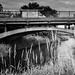 Tullibody Bridge
