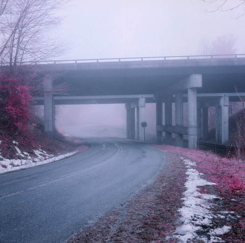 fog mist nebel eir infrared landscape scenic northcarolina trees