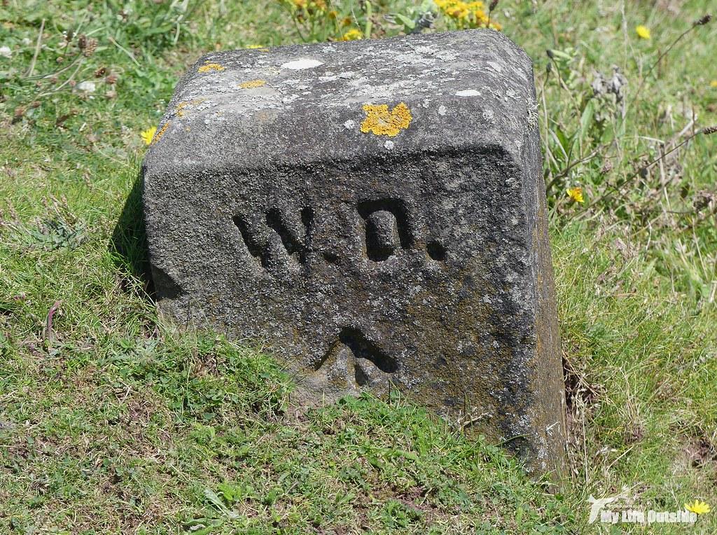 P1100800 - War Department Marker Stone, Angle Peninsula