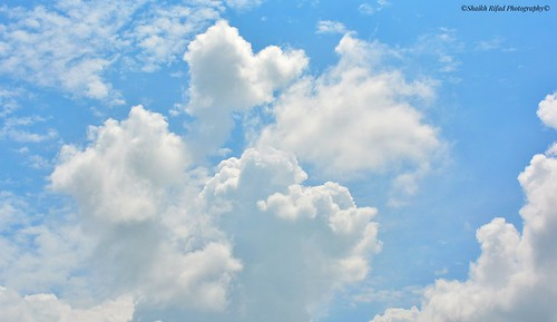 #sky #bluesky #skylovers #skyporn #skyline #husky #skypainters #skyscraper #clearsky #whisky #beautifulsky #instasky #siberianhusky #nightsky #sky_captures #rsa_sky #jackgilinsky #skyrim #huskylove #skyscrapers #skydiving #skystyles_gf #clearskys #world_b