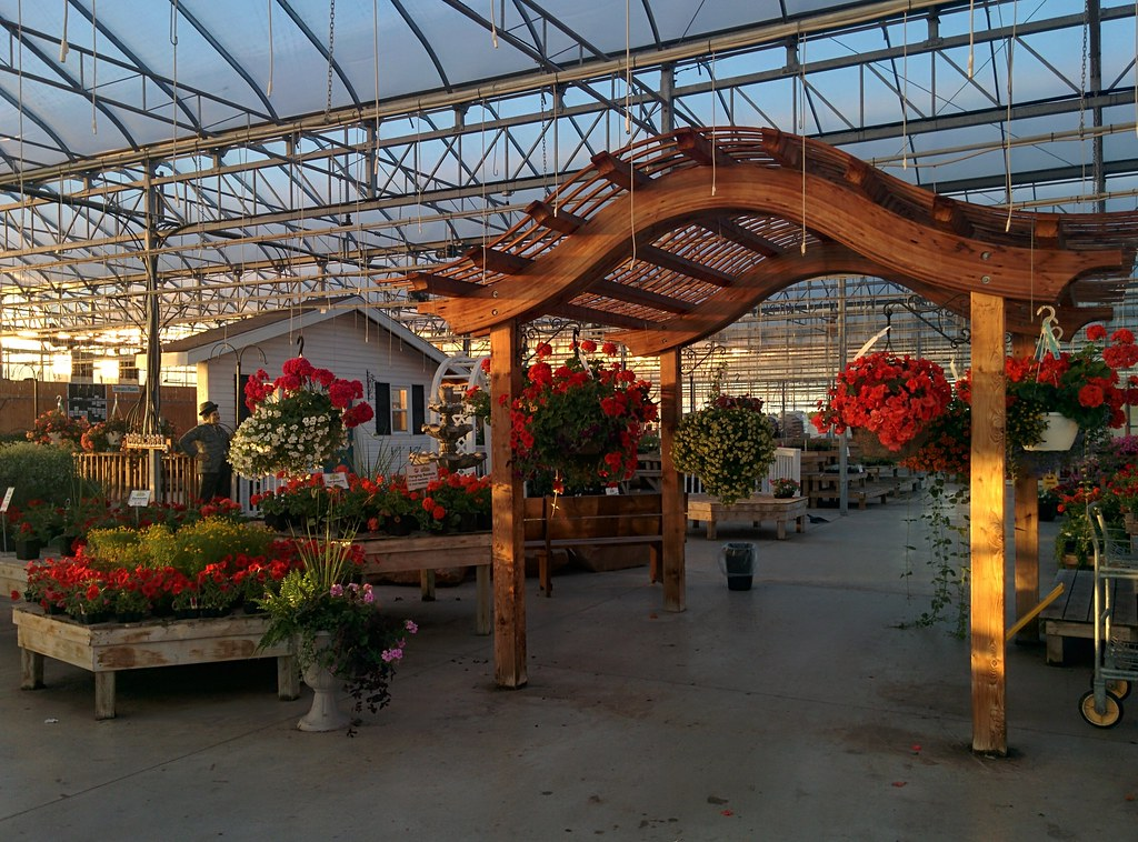In the greenhouse #pei #princeedwardisland #charlottetown #jewellscountrymarket #greenhouse