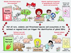 Meeting the key biodiversity area (KBA) criteria