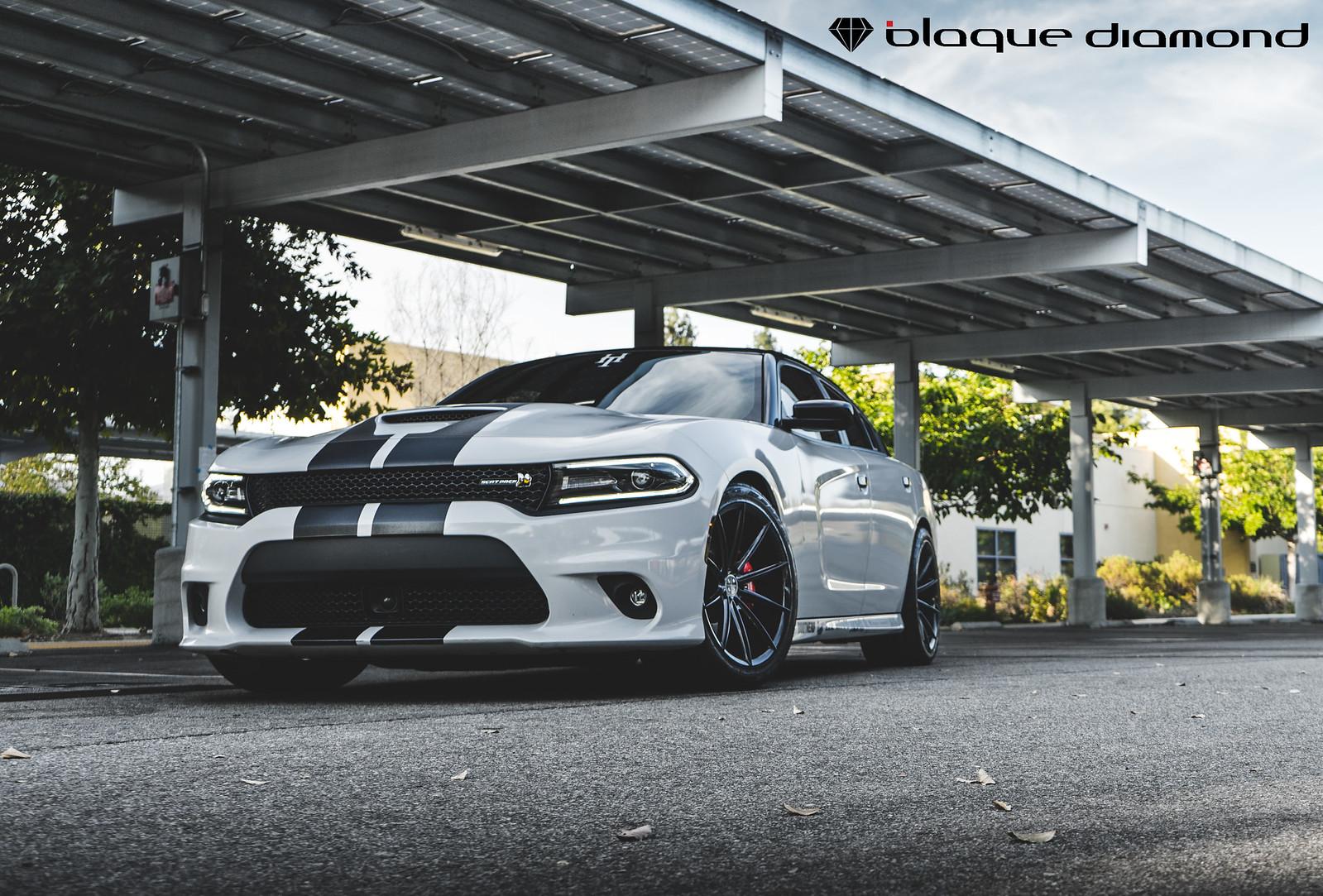 Dodge Charger on Gloss Black BD-11-4