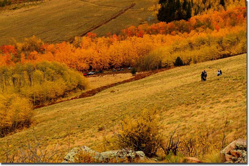 Colorado Trail (18)