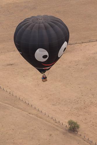 Hunter Valley Balloon Fiesta 31