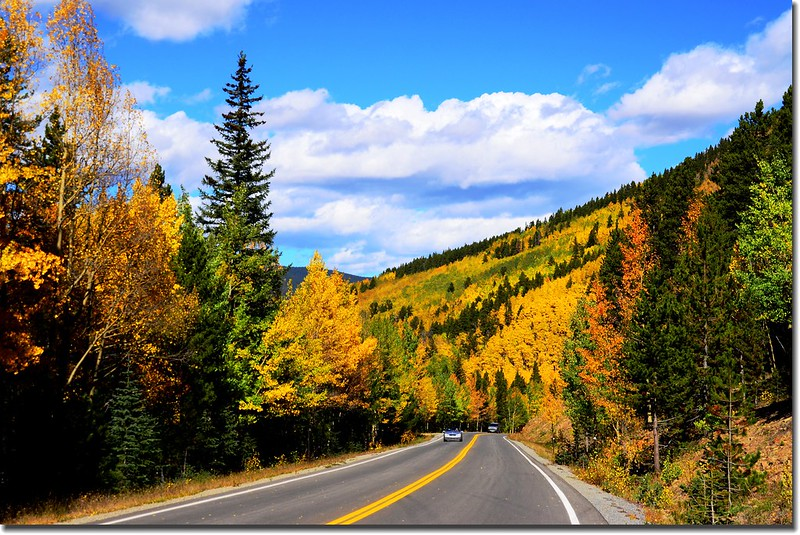 Fall colors, Mount Evans Scenic Byway, Colorado (51)