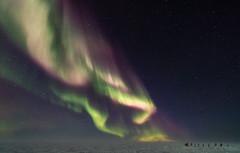 Aurora towards the Ceremonial South Pole