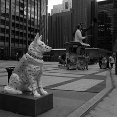 K9 Patrol - Downtown Chicago - 17 Aug 2017 - 5DS - 027F