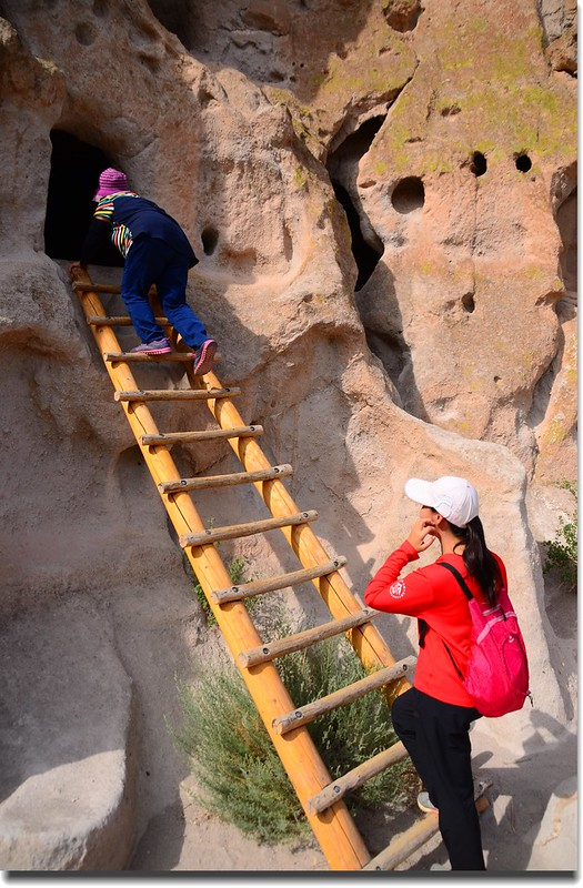 A wooden ladder leading to a cave dwelling at the Bandelier National Monument (3)
