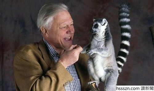 David-Attenborough-Life-Story-525975_590_350