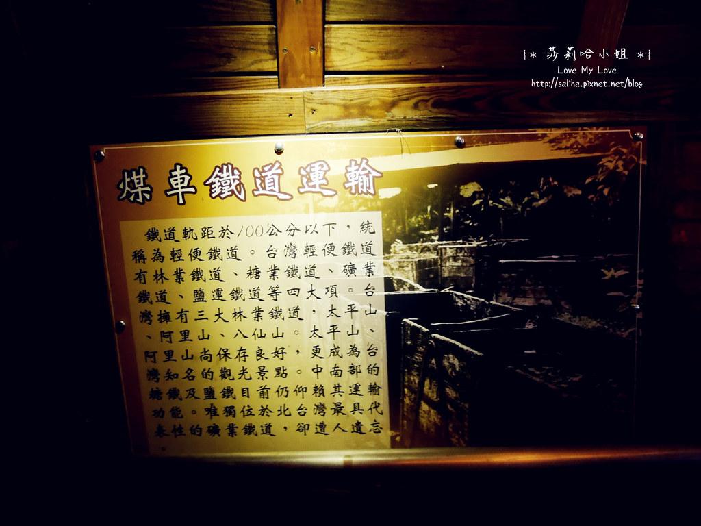 台北信義區一日遊景點和興炭坑蝙蝠洞 (15)