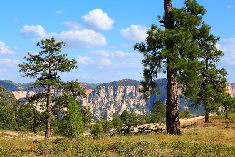 IMG_1300 Northfate Peaks Trail