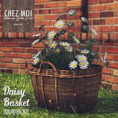 Daisy Basket CHEZ MOI