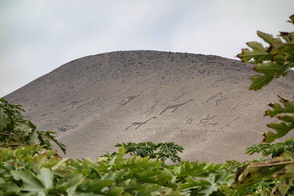 Arica - Geoglifios del valle de Lluta