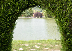Through the hedge - Photo of Berny-Rivière