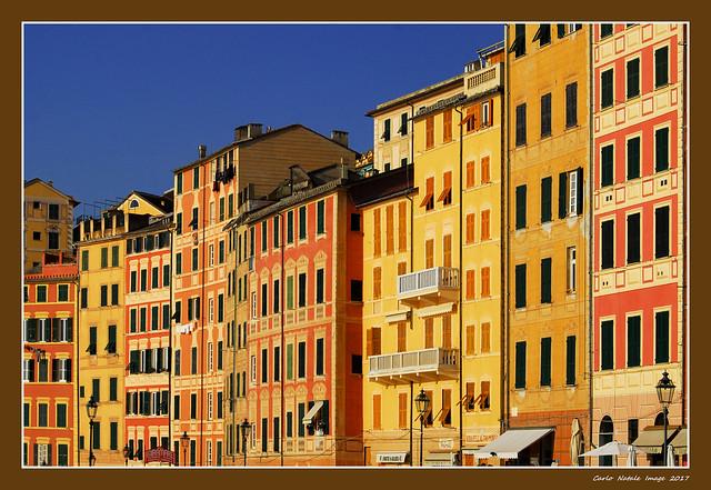 The houses of Camogli