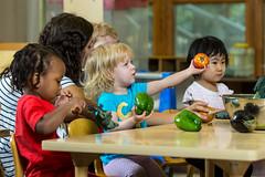 2017 - September - HDFS - Fresh Vegetables in the Child Development Lab School-54.jpg