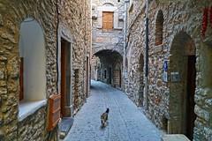 Narrow streets of Chios