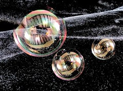 #Smile on Saturday - #Bubbles on Black Velvet