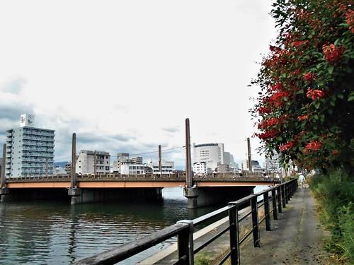 jp-kochi-rivière (2)
