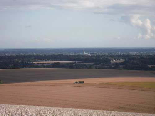 Chichester and Cathedral across fields (from St. Roche's Hill)