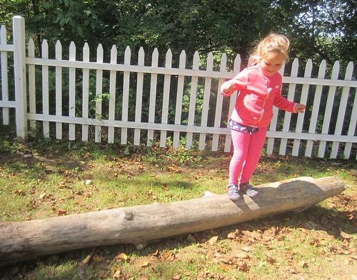 log balancing