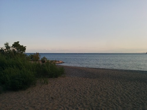 Looking out #toronto #woodbinebeach #kewbeach #beaches #lakeontario #evening #latergram