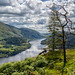 Wonky trees above Thirlmere. by Tall Guy