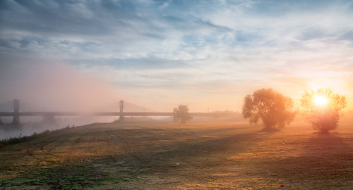 domovinskimost homelandbridge zagreb croatia sunrise suneset sava savariver river riverside trees tree clouds fog bridge morning oblaci rijekasava izlazaksunca magla drveće obala obalasave hruščica bluesky dawn grass goldenhour moodysky velikagorica sundown